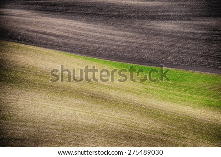 Grunge field waves background, South Moravia, Czech Republic - stock photo