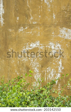 Grunge gold background and green bush