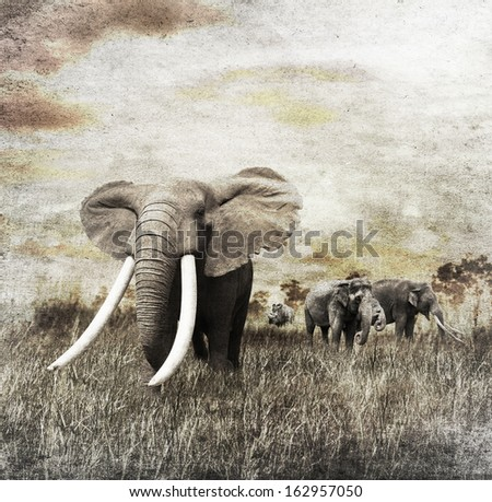 Grunge Image Of Walking Elephants