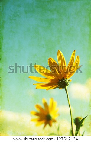 Grunge image of yellow wildflowers. - stock photo