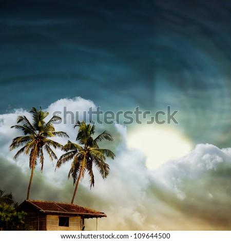 grunge palm background - stock photo