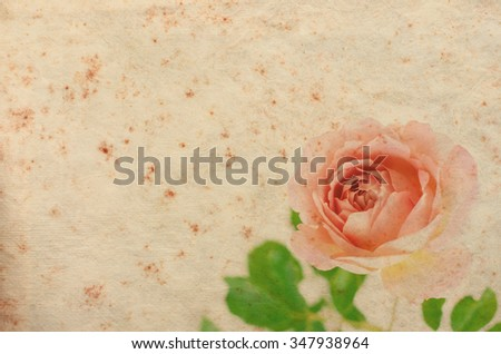 Grunge paper background with flowers and space for text or image - stock photo