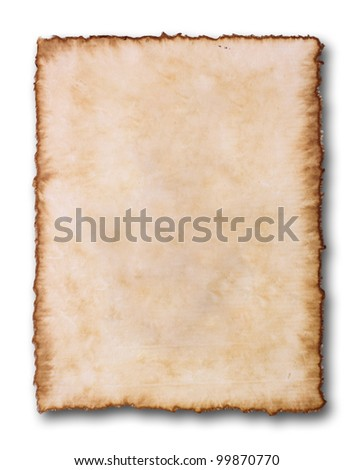 grunge paper on white background - stock photo