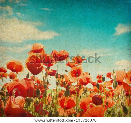 grunge paper with poppy field against  blue sky. - stock photo