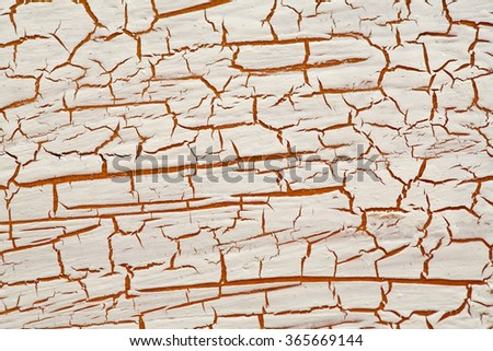 Grunge Sketch Effect Texture . The Cracks Texture .