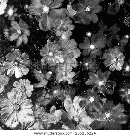 Grunge stained aged floral background in black and white colors  - stock photo