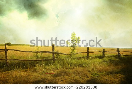 grunge sunset on field at summer  - stock photo
