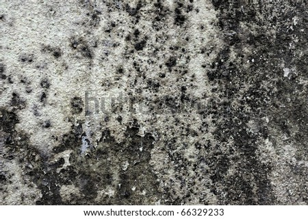 Grunge textured cement Wall background, scratched into surface. - stock photo