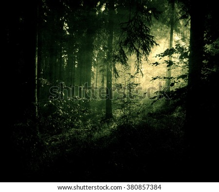 Grunge vintage photo of beautiful dark mystical forest with sunrise/sunset. Landscape Wallpaper