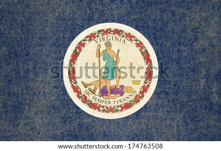 Grunge Virginia state Flag - stock photo
