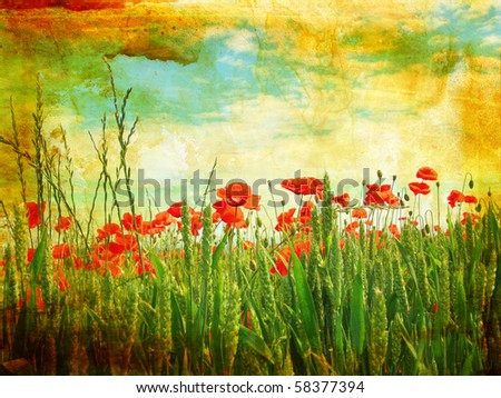 Grungy background with poppies - stock photo