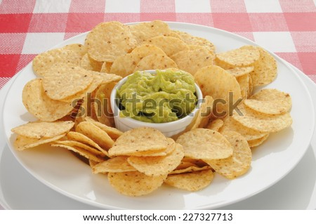 Guacamole with round corn tortilla chips on a picnic table