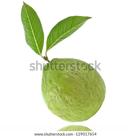 guava fruit isolated on white background - stock photo