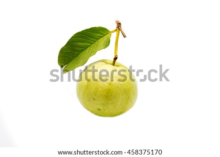 Guava on white background isolated.