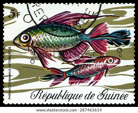 GUINEA - CIRCA 1971: a stamp printed by Guinea show the fishes Fish Phenacogrammus interruptus, circa 1971 - stock photo