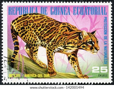 GUINEA - CIRCA 1976: A stamp printed by GUINEA shows leopard, series animals, circa 1976 - stock photo