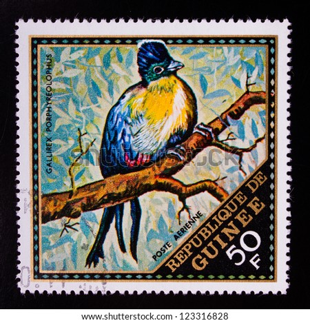 GUINEA - CIRCA 1976: A stamp printed in Guinea shows a coloful bird on a branch of a tree, circa 1976.