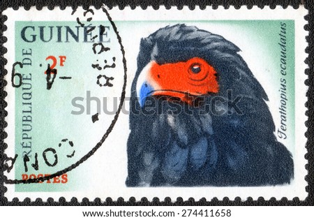 """GUINEA - CIRCA 1987: A stamp printed in Guinea shows a series of images """"Birds"""", circa 1987   - stock photo"""