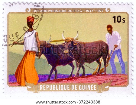 GUINEA - CIRCA 1977: A stamp printed in Republic of Guinea shows farmers plowing with yaks,The 30th Anniversary of Guinean Democratic Party (PDG), circa 1977 - stock photo