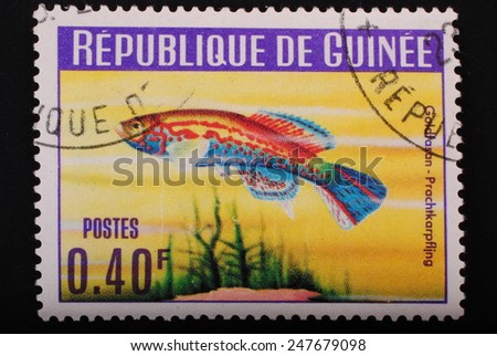 Guinea-circa 1964: Postage stamp printed in Republic of Guinea shows the image with the inhabitants of the underwater world of  fish Splendor Karpf Ling on blue background theme philately animals - stock photo