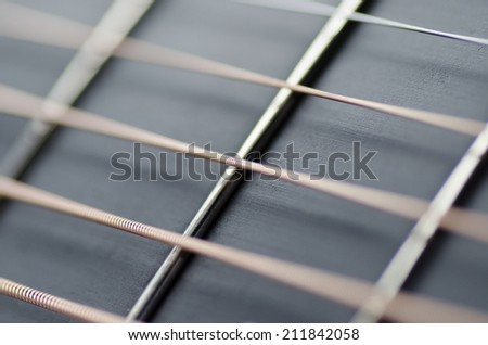 Guitar strings and frets - stock photo