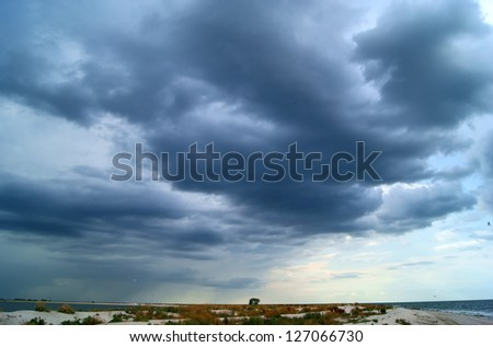 Gulf and sandy beach with gulls before storm - stock photo