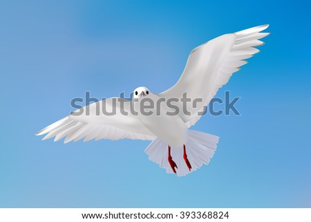 Gull in blue sky.   realistic illustration. Raster version