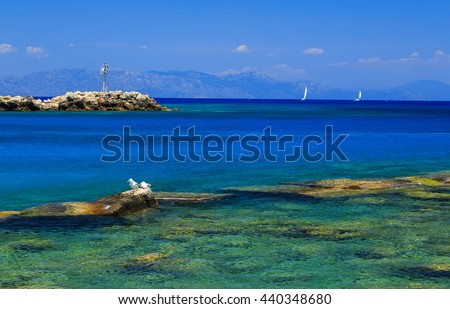 Gull on the rocks near the shore against sea and beautiful yacht - stock photo