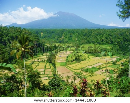 Gunung Batur volcano and rice fields in Bali, Indonesia seen from a hilltop terrace - stock photo