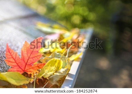 Gutter full of fall leaves - stock photo