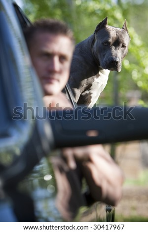 Guy in truck with pit bull