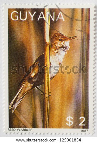 GUYANA - CIRCA 1987: a stamp from Guyana shows image of a reed warbler (Acrocephalus scirpaceus), circa 1987