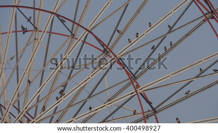 GWALIOR, INDIA - FEBRUARY 10, 2016: An Unidentified small birds are sitting on ferries wheel in Gwalior Trade fair.