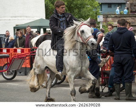 Gypsies,Romanys,'travellers' and their horses, at Appleby Horse Fair, held every June in Appleby, Cumbria, UK. taken 05/06/2014