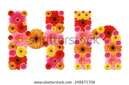 h, flower alphabet - stock photo