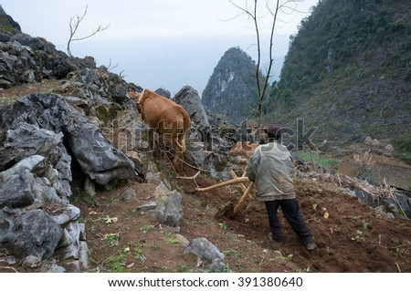 HA GIANG, VIETNAM, February 18, 2016 Hmong man (name unknown), Cultivators, on rocky areas, Dong Van, Ha Giang province, Vietnam