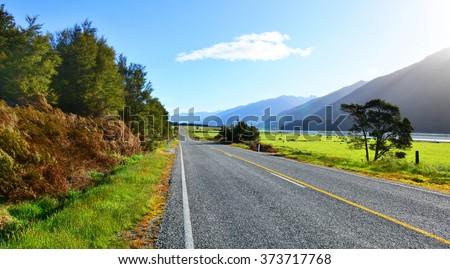 Haast Pass-Makarora Rd.South Island, New Zealand - stock photo