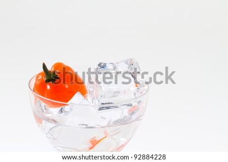 Habanero chili in small glass - stock photo