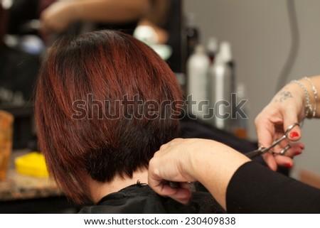 Hair cut in a professional hairdresser salon. - stock photo