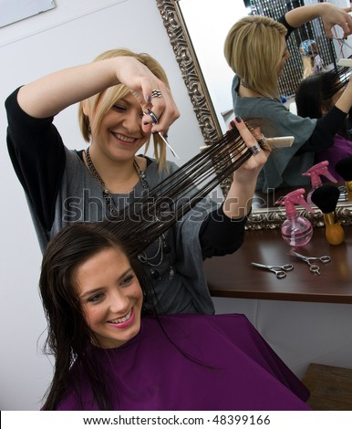 hair stylist cutting woman hair in salon