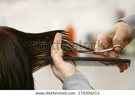 Hairdresser cutting hair in hairdresser salon