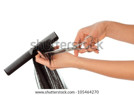hairdresser cutting young woman with long black hair - stock photo