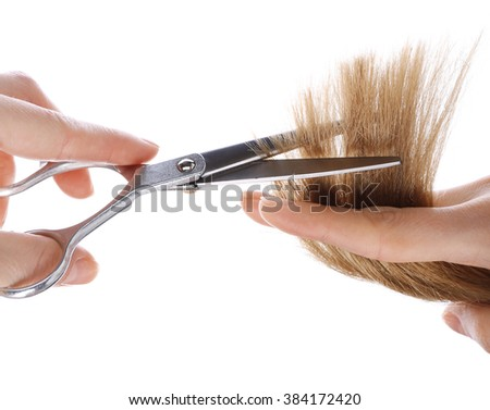 Hairdresser's hands with scissors cutting blonde strand of hair, isolated on white