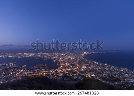 Hakodate City View