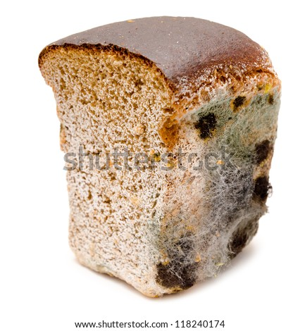 half a loaf of mouldy rye bread - stock photo