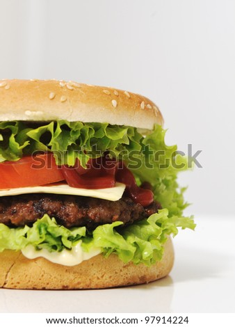 Half burger with copy space for your text or message