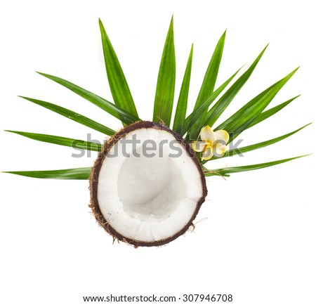 Half Coconut with palm leaves top view  isolated on white background - stock photo