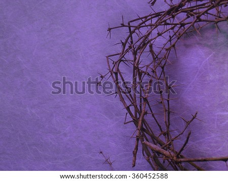 half crown of thorns on purple background with negative space on the left side - stock photo