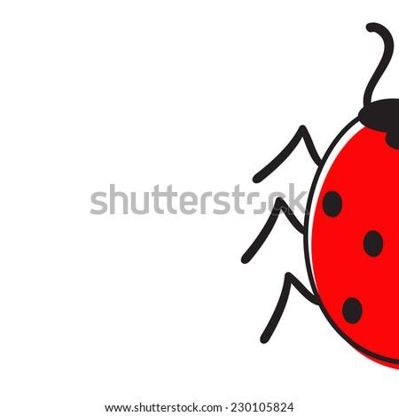 Half ladybug isolated on white background - stock photo