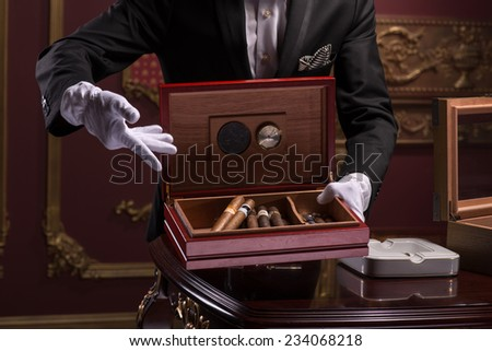 Half-length portrait of handsome young man wearing classic costume and white gloves standing at the expensive wooden table showing us the box of his favorite Cuban cigars - stock photo
